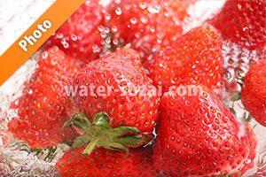 水に浸る苺の写真・フォト フリー素材