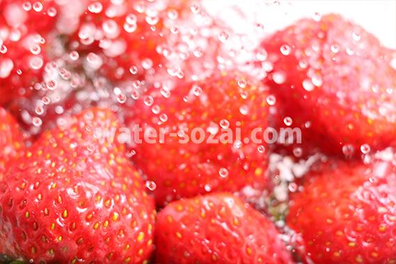 苺の上を水が散布する写真・フォト フリー素材